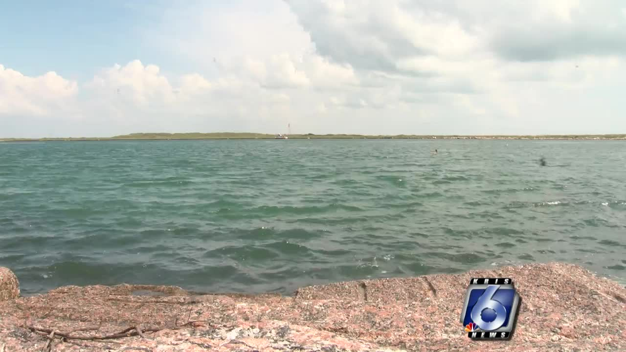 UT Marine Science Institute continues to research red tide