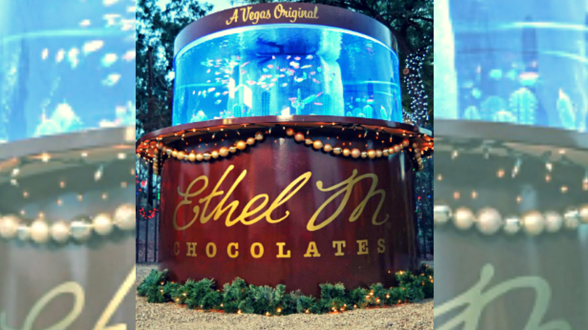 Tanked Unveils Holiday Themed Aquarium At Ethel M Chocolate Factory In Henderson