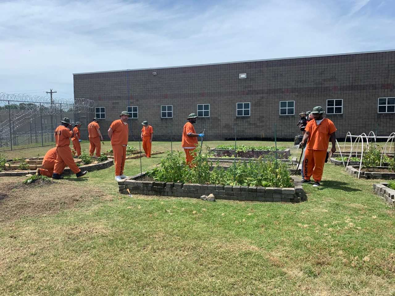 Inmates learn how to garden while incarcerated at the