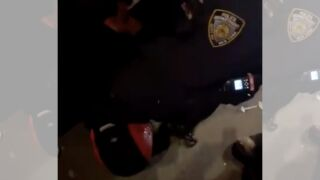 nypd-arrest-sircarlyle-arnold.jpg