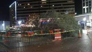 Grove Christmas tree falls over