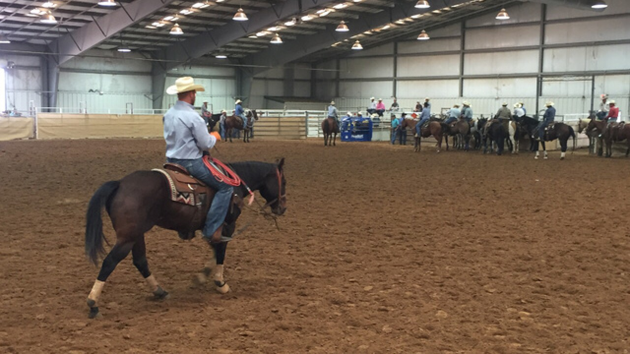 Cattle roping at the Tulsa State Fair