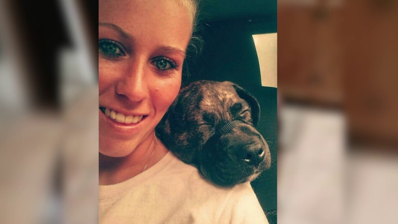 Trainer said dogs that ate Glen Allen owner 'were very passivedogs'