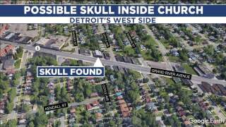 Police: Human skull found in flower pot on Detroit's west side
