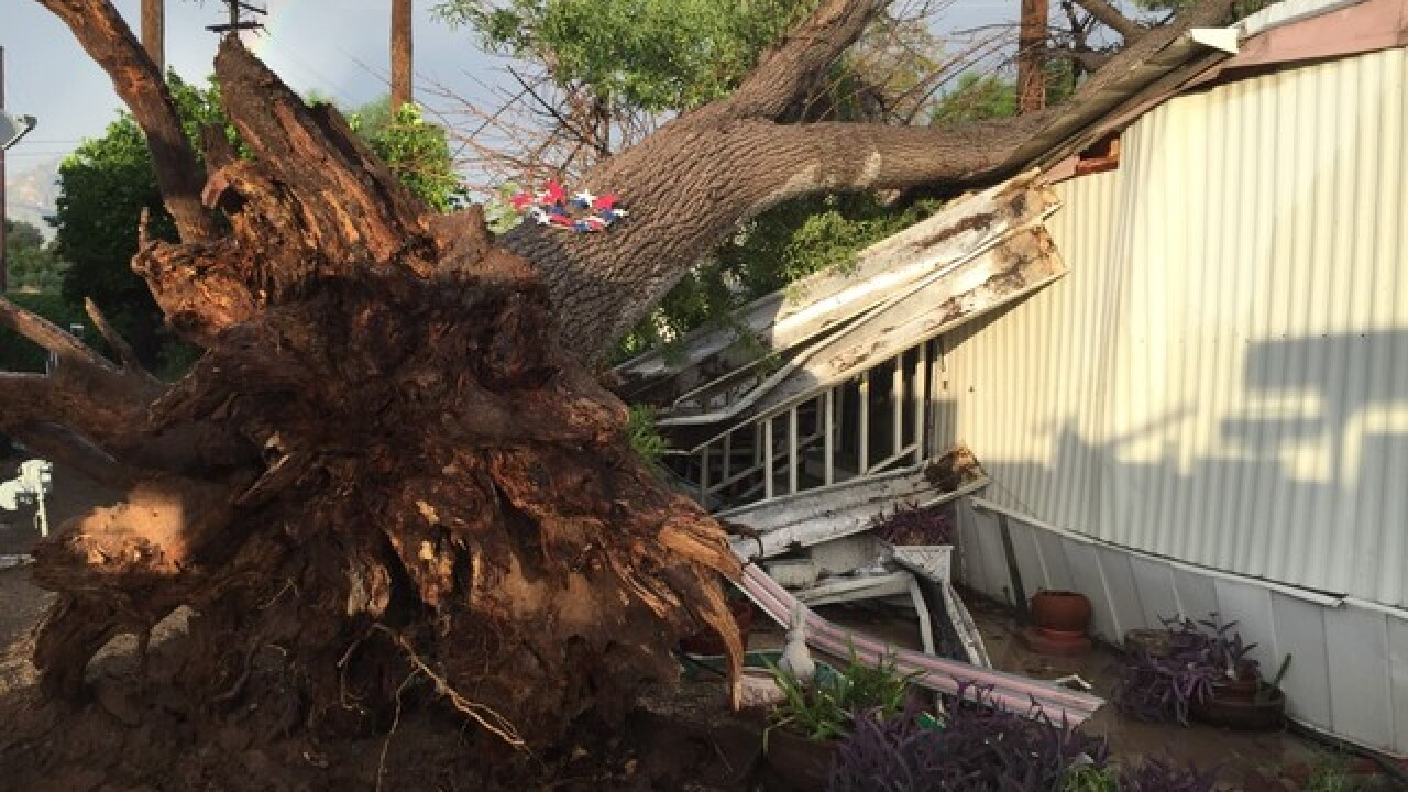 Tree lands on mobile home following storms