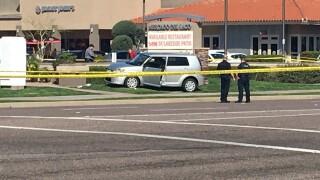 Royal Palm Hayden pedestrian crash
