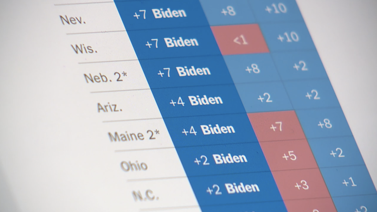 Political polls show Biden in the lead, but can polls be trusted after 2016?
