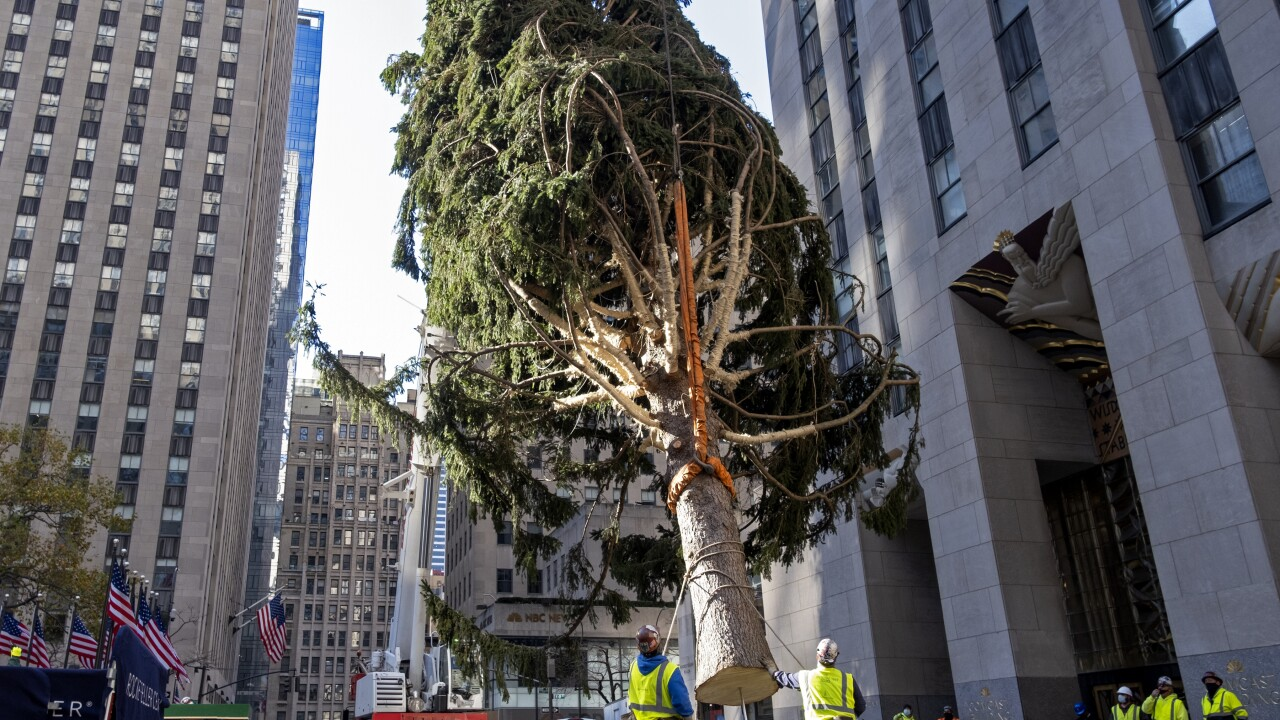 rockefeller center christmas tree looks like it s been through 2020 pix11