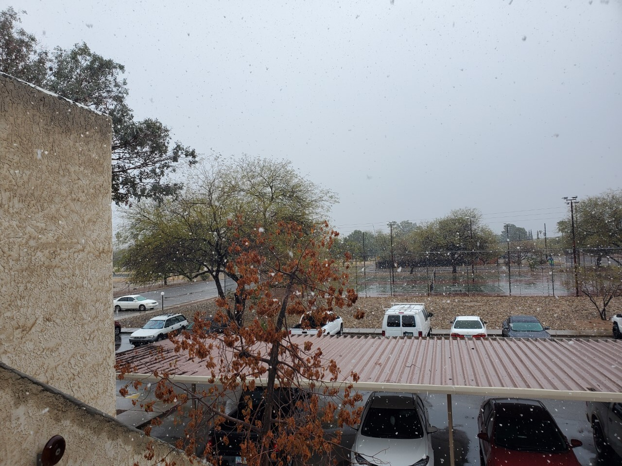 Snow in Central Tucson