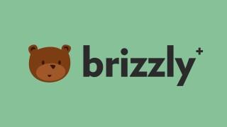 brizzly plus.jpg