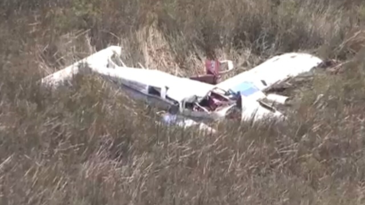 Small plane crashes in Everglades