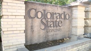colorado state university_generic.png