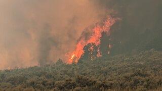 Lion Fire_April 7 2020_229 acres