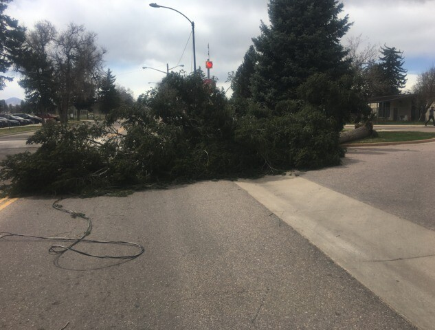 PHOTOS: Strong winds cause damage along Front Range