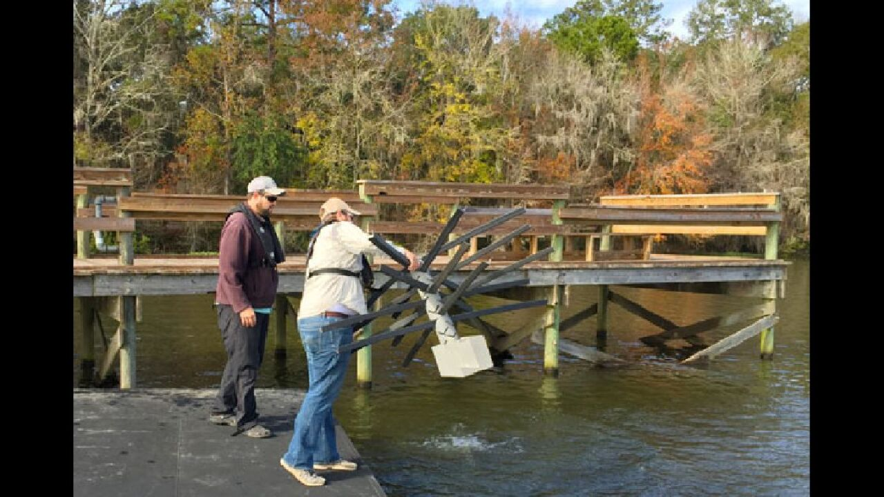 Fish Attractors Installed At Lake Talquin To Help Shore