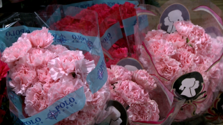 Flower industry facing shortages this Mother's Day