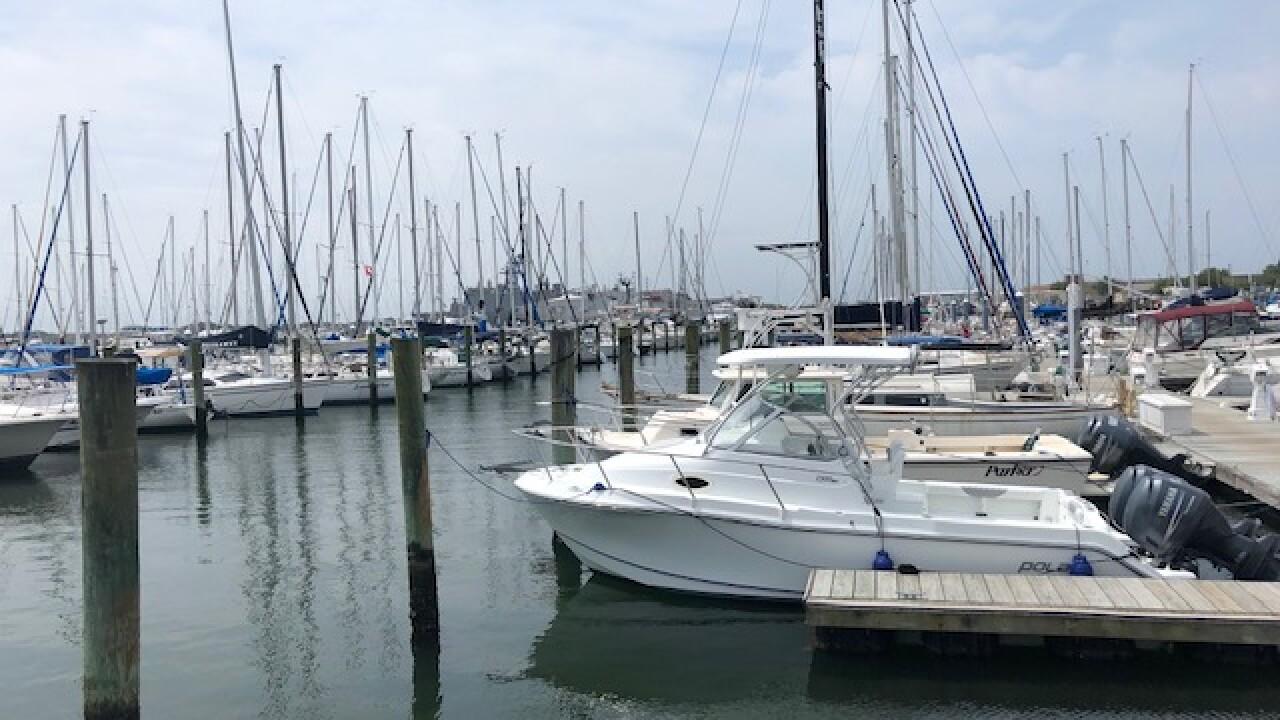 sailboats in marina.jpg