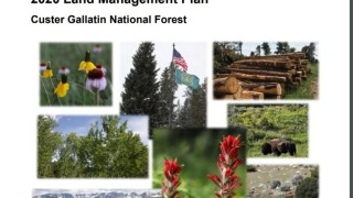 Final Revised Land Management Plan and Final Environmental Impact Statement for Custer Gallatin National Forest released