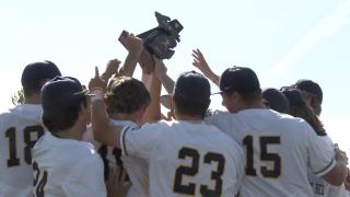 Hudsonville baseball wins district title
