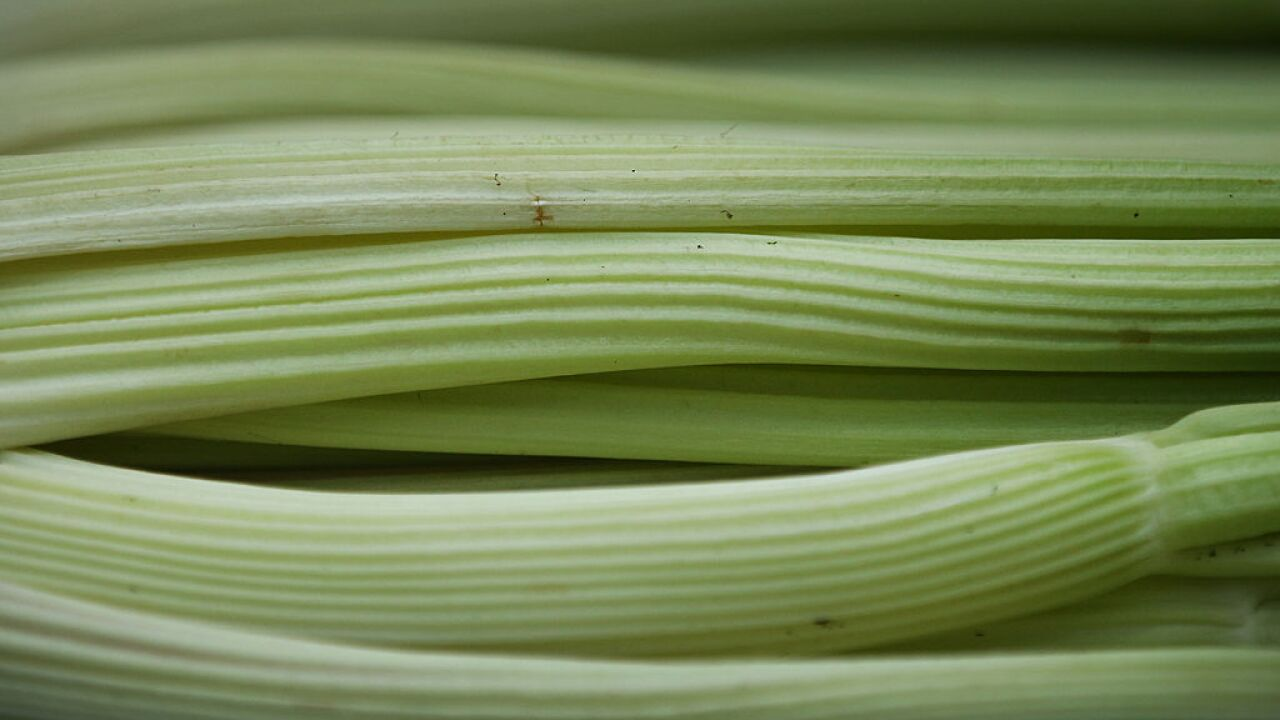 Celery juice craze may be driving up vegetable's price