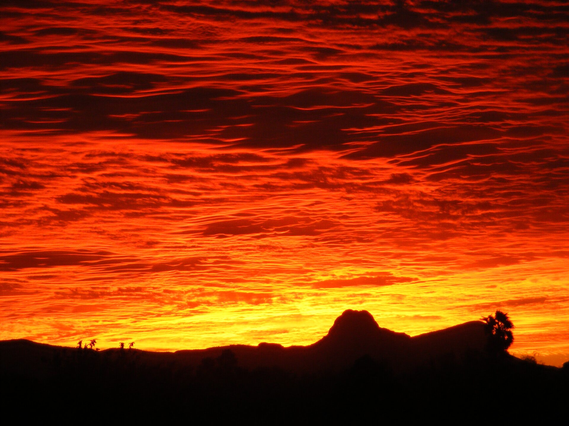 SUNSET- william.schoenfeld sunset from Shannon Rd. and Linda Vista.JPG