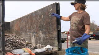 Flour Bluff fish clean-up.PNG