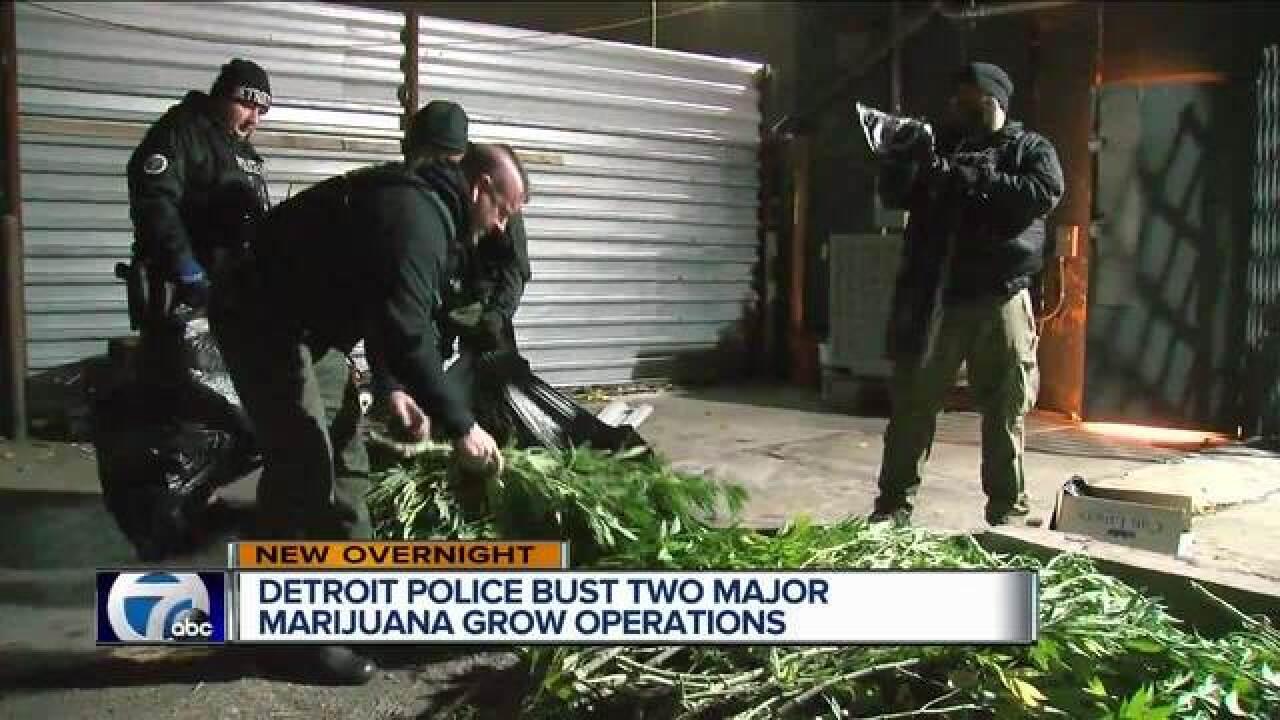 DPD discovers $127K marijuana grow operation across street from 11th
