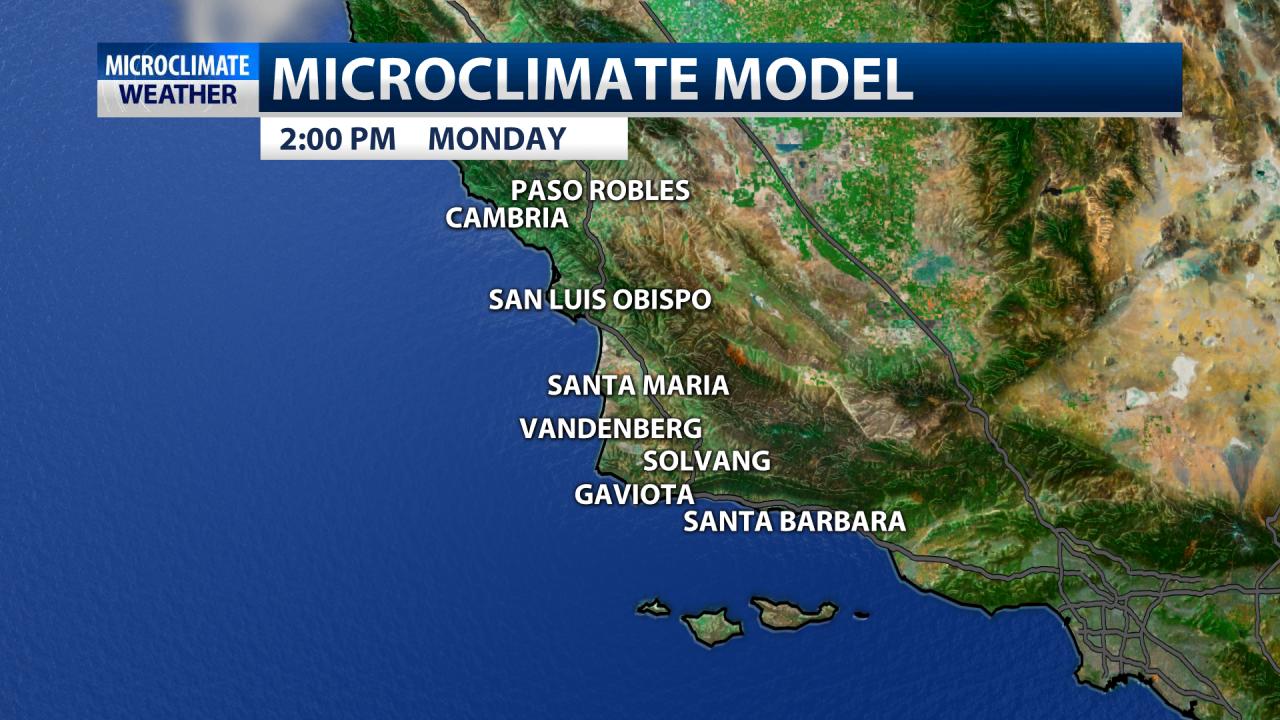 Microclimate model
