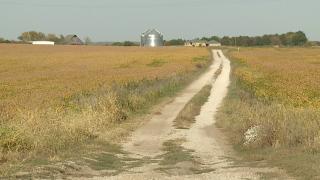 Livingston Co. farm