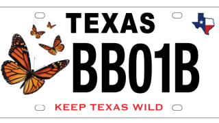 TX Parks & Wildlife (Twitter)