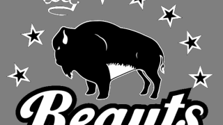 Pegulas buy women's hockey team Buffalo Beauts