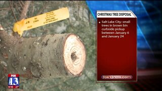 Utah cities offer options for disposing of your Christmastree