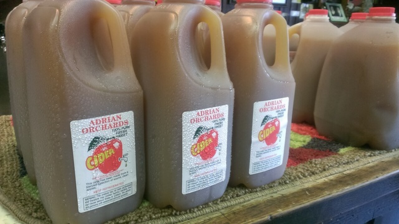 Fall treats: How apple cider is made