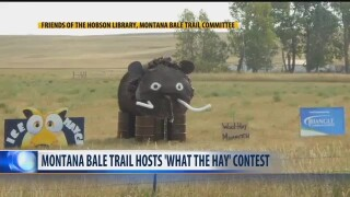 What The Hay - Montana Bale Trail