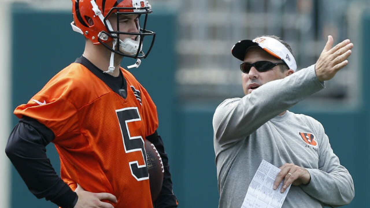 All eyes on the offense at Bengals' training camp
