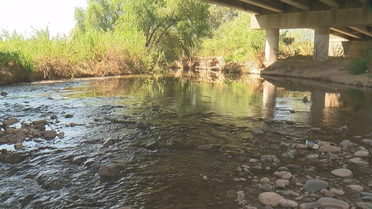 Santa Cruz River has clear water and new species