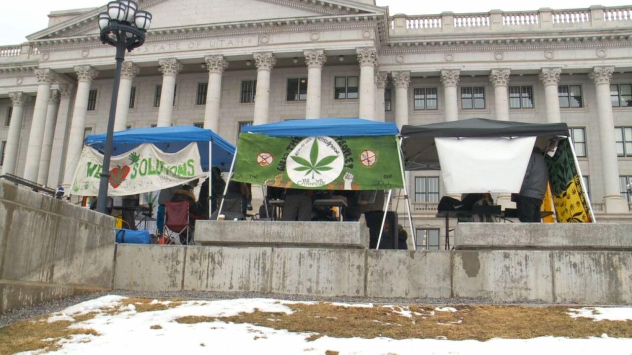 medical marijuana cannabis weed pot (2).JPG