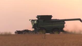 combine harvest.jpg
