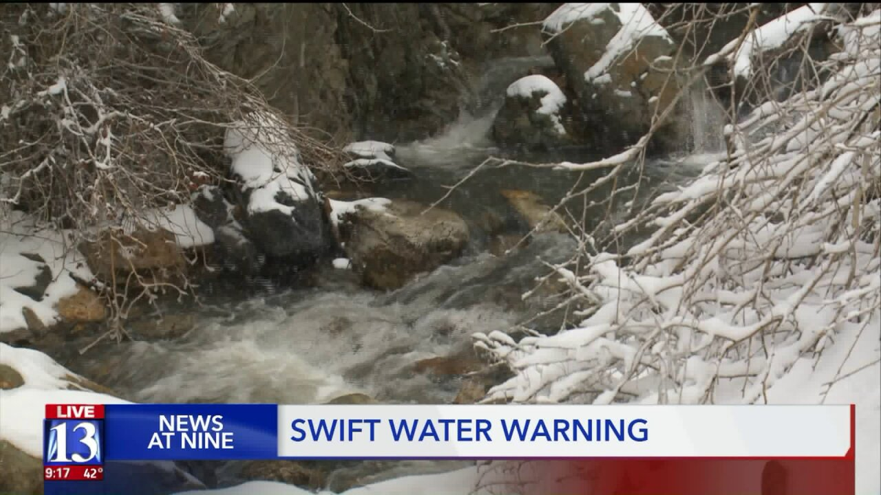 Rushing waters a concern for dogs,owners