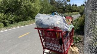 shopping cart .jpg
