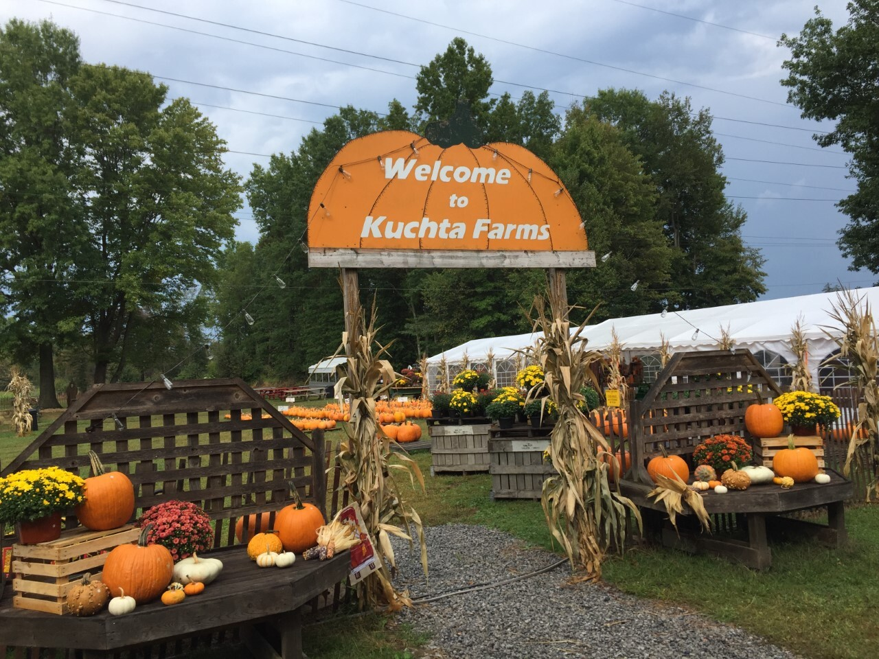 Kuchta Farms.jpg