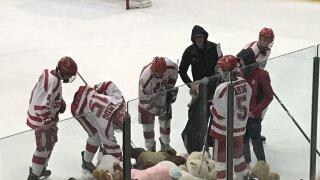 Regis Jesuit hockey - teddy bears on ice pic.jpg