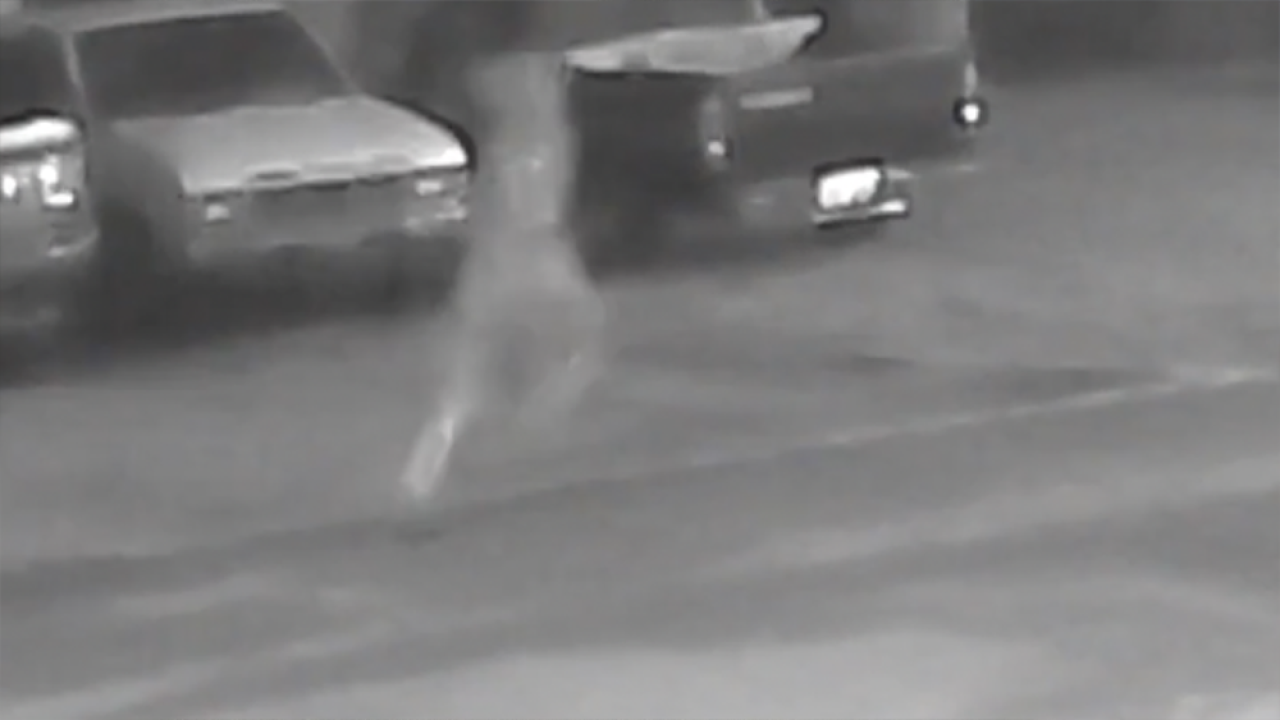 Tampa PD releases more Seminole Heights video