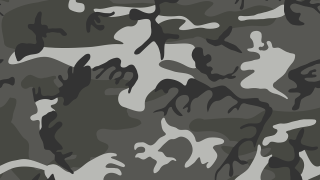 camouflage-145980_1280.png