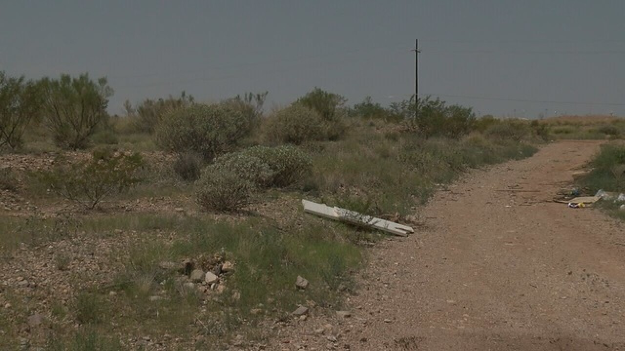 A huge land buy and Tucson's future