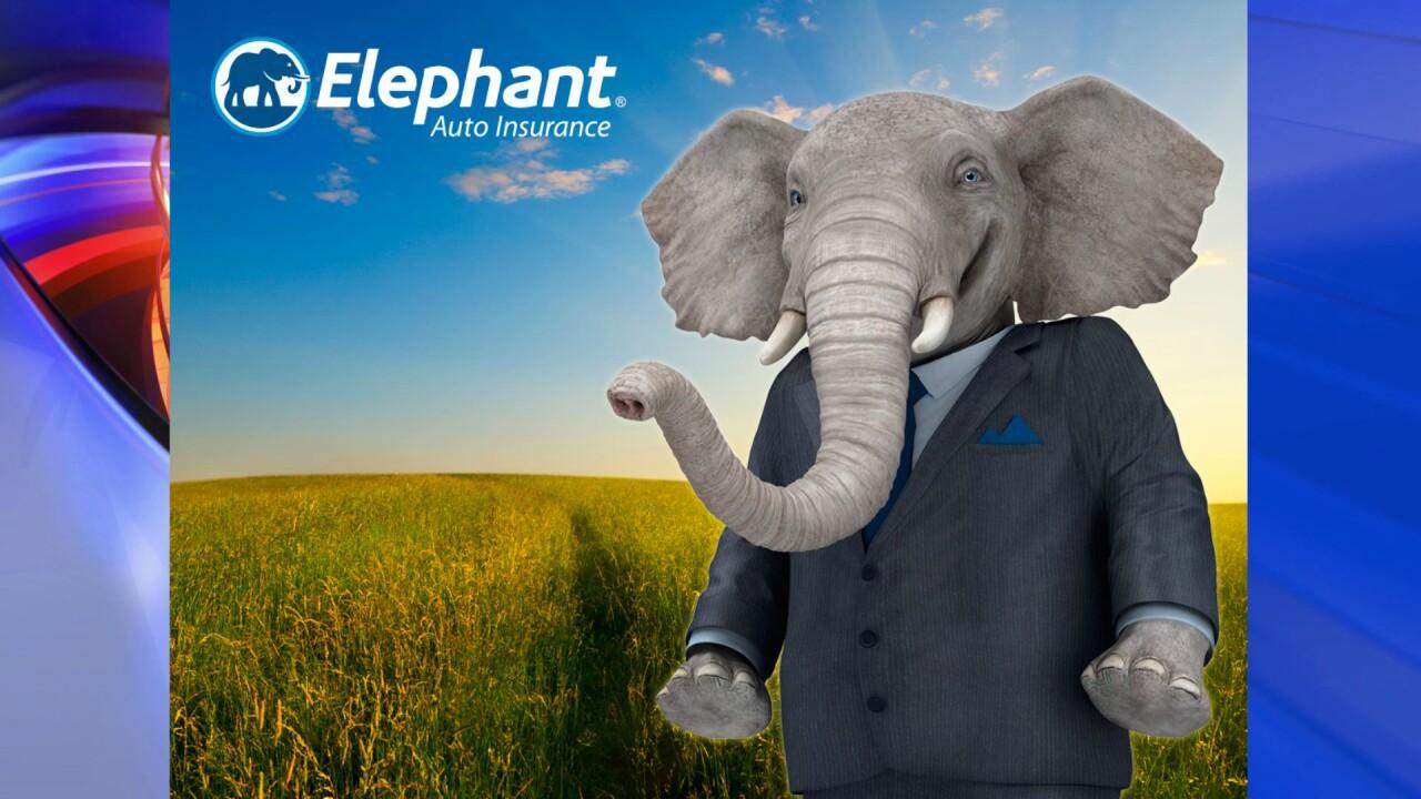Elephant Auto Insurance expansion means 1,200 new jobs inHenrico