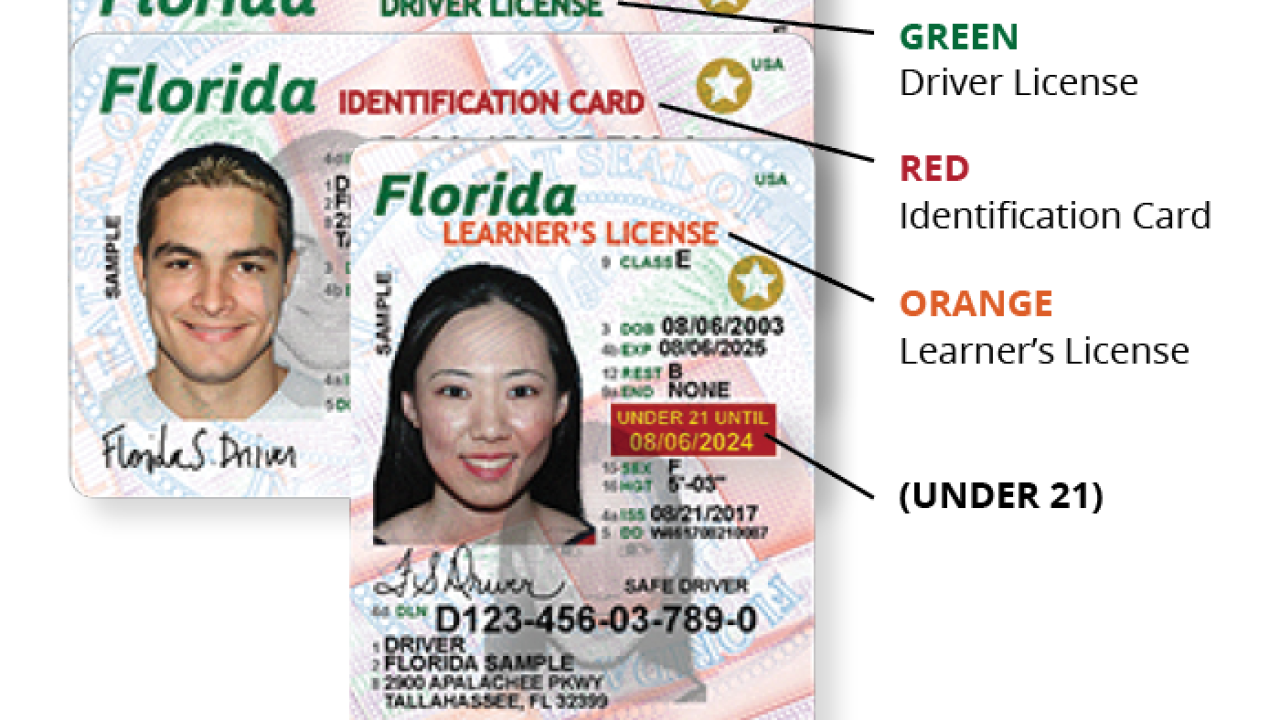 Florida driver licenses to get new design 3