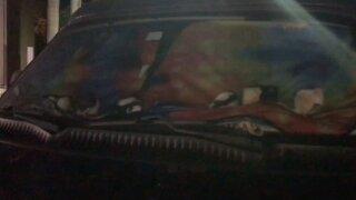 KGTV Rat Van