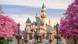 Construction worker killed at Disneyland