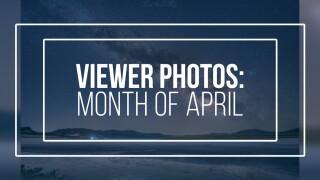 Viewer Photos: April